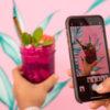 Algoritmo del Feed de Instagram - Leon Kadoch - Consultor de Marketing Digital en Panamá